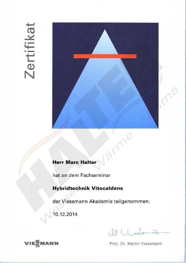 Zertifikat: Hybridtechnik Vitocaldens